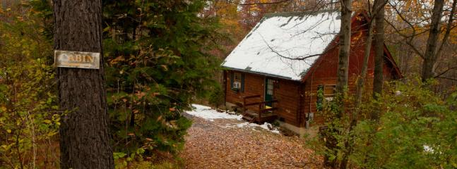 Secluded, Pet-Friendly, Relaxing Log Cabin (Wifi), Berkeley Springs