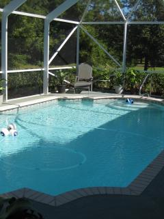 Screened-in Pool Area of Patio