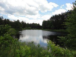 Single Cabin on 120 Arces with Pond near Dells, New Lisbon