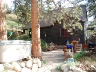Carver's House - Estes Park vacation rentals