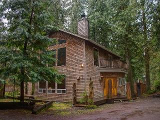 Eagle Falls Lodge - 15% OFF Through NOV 1st - indoor waterfall - wifi, Rhododendron