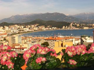 Air-Conditioned Apartment/ Flat  - AJACCIO, Ajaccio