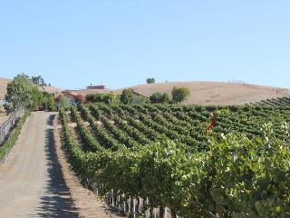 Solitude I, Paso Robles
