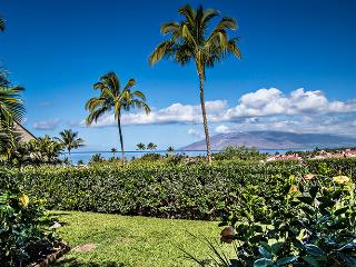 Ocean View - Fresh Renovation -Steps to the pool & spa!, Kihei