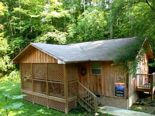 1BR Cabin close to Pigeon Forge Pkwy (gp) - Pigeon Forge vacation rentals