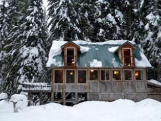 Trillium Lake and Government Camp Secluded Cabin