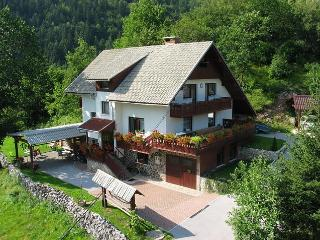 Fantastic apartment  Brglez 8  Bled * * *  Bled - Slovenia vacation rentals