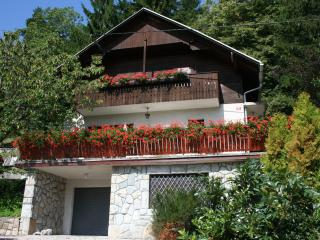Holiday house Kristan, view on lake, Bled