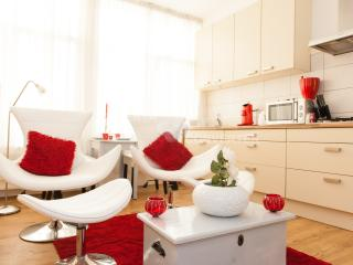 luxury small apartment for 2 - Brussels vacation rentals