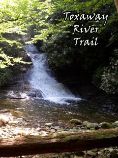 Toxaway River Trail, Christi Fuller Photography, Copyright 2013