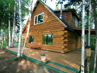 Private, Waterfront Cabin with Aurora & Wildlife, North Pole