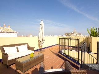 Pajaritos Terrace. 1-bedroom by the Cathedral - Seville vacation rentals