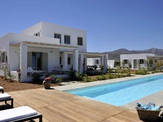 Luxury villa with private pool, next to the beach, Naoussa