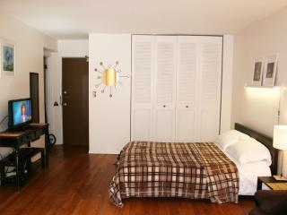 Uptown studio, express to downtown - Illinois vacation rentals