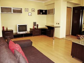 Fancy one bedroom apartment next to Cismigiu Park, Bucharest
