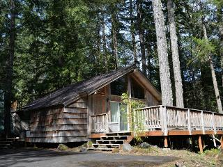 Pappy's Cabin - Mount Hood vacation rentals