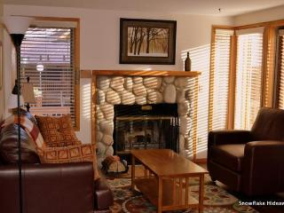 Ski in/SKi Out, 2 bedroom, 2 bath condo, Breckenridge