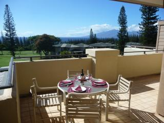 GREAT CONDO WITH A OCEAN VIEW AT GREAT PRICING!, Kapalua