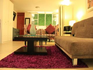 AMAZING STUDIO ON 1ST FLOOR BY THE MONTH, Città del Messico