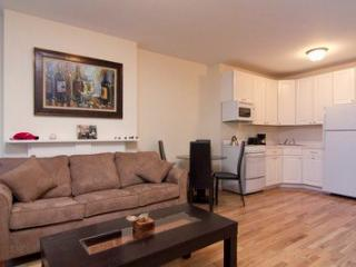 Delight Apartment Sleeps 5 2FE ~ RA42874, Long Island City