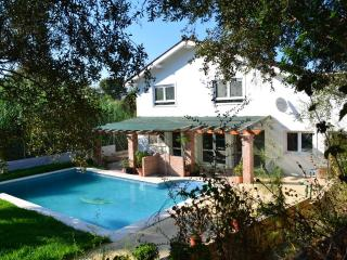 Charming house with pool and garden, Malaga