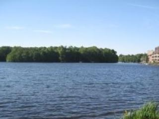 Furnished Reston Studio by the Lake- Close to DC
