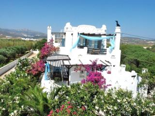 Beachfront Designer Style near NAOUSA - Naoussa vacation rentals