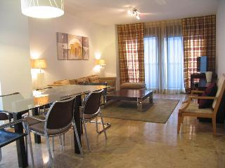 Wonderful Apartment with wifi close to Ciudad de las Ciencias, Valencia