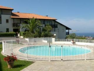 LES HAUTS DE BORDAGAIN ~ RA25942 - Basque Country vacation rentals