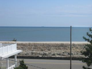 Renovated Beach Block Condo - Off-season & Summer, Cape May