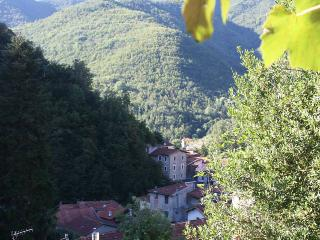 Traditional Stone Holiday Cottage  In Liguria, Ita, Triora