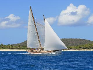 Sail, Snorkel, Hike Ecotour on Classic Yacht Heron, Clifton