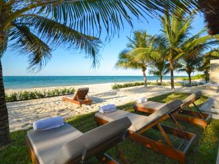 Private & Luxurious Villa on Beach!  NEW TO MARKET, Cozumel