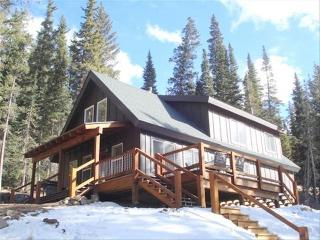 Custom Cabin with Amazing Views, 20 Min from Breck, Breckenridge