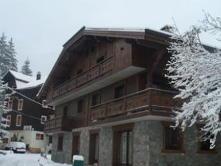 Large Morzine Chalet sleeps 12***SPECIAL OFFER*** - Morzine vacation rentals