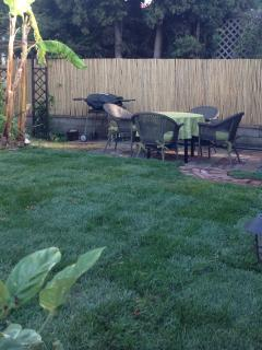 BBQ and outdoor dining in back yard
