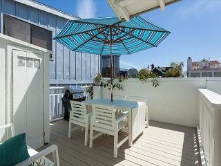 Lovely Large One Bedroom, One Bath Back Cottage - Newport Beach vacation rentals