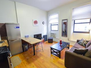 Brand New One Bedroom/central Park, New York City