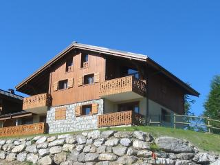 Les Carroz Ski Apartment, Les Carroz-d'Araches