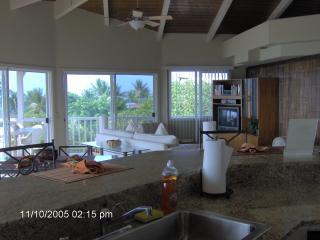 Ocean View from Kitchen, Living area and Lanai
