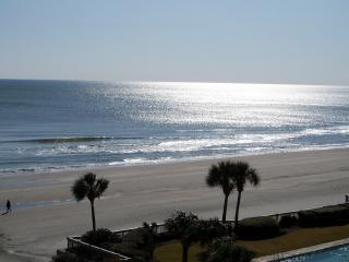 SeaWatch 2 BR Great Oceanview, Oct. Weeks $695 - Myrtle Beach vacation rentals