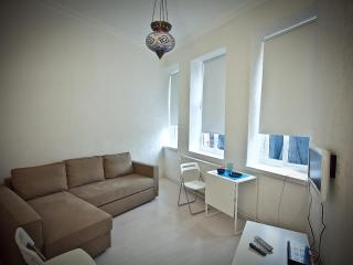 Galata Sapphire cozy, refurnished apt. 1 BR - Istanbul vacation rentals