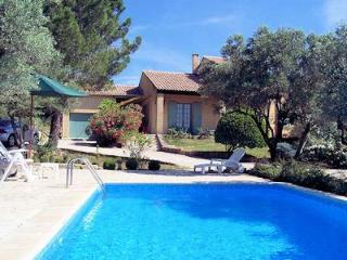 Very agreable villa in the wine yards 0026 - Castillon-du-Gard vacation rentals