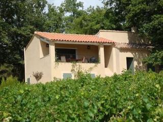 Villa  in the wine yards Vaison la Romaine 0155 - Castillon-du-Gard vacation rentals