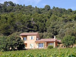 Nice villa nestled in the wine yards 0164 - Castillon-du-Gard vacation rentals