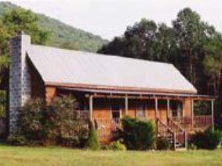 The Cabin, of the Blue Ridge Mountains - Hiwassee vacation rentals