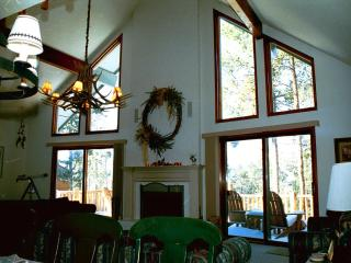 Five bedroom home in Colorado Mountains - Dillon vacation rentals