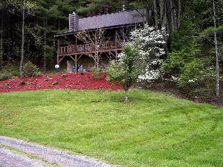 Valle View Log Cabin - Boone vacation rentals