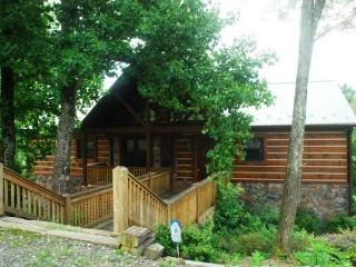 Dancing Bear Cabin - Boone vacation rentals