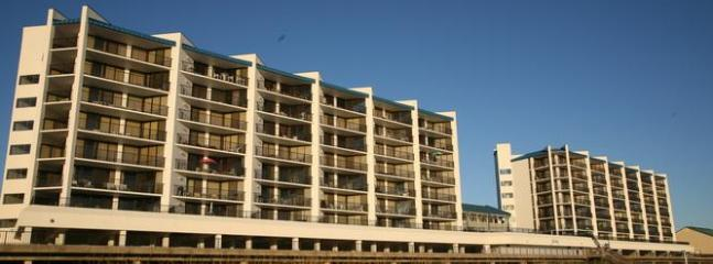 Aqua Vista Condominiums - Snowbirds!  2 Bedroom Winter Gulf Front Condos! - Panama City Beach - rentals